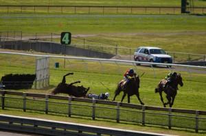 horse-fall-Fergus-McIver-died-Aug11-credit-horseracingkills.com_-300x199