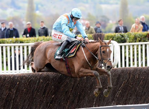 mad moose jumps the last on his way to winning at cheltenham 19-4-12