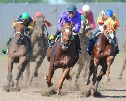 Iowa's Dead Racehorses Revealed