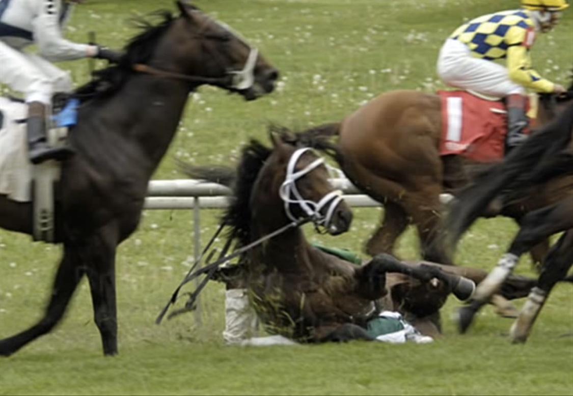 The Week In Racing Horseracing Wrongs
